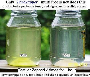 Zapper kills many microbes quickly